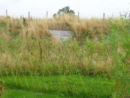 i trädgården - pile i marken, staket itradgarden.se