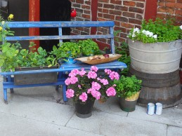 i trädgården- växter på och i bänk itradgarden.se