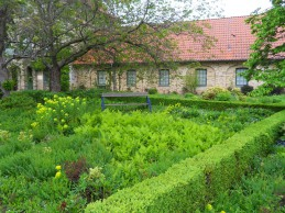 i trädgården- Alnarpsparken om våren, plantering, buxbom, ormbunkar itradgarden.se