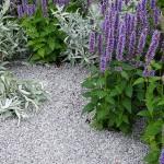 i trädgården - rabatt i blått,lila,silver, singel itradgarden.se
