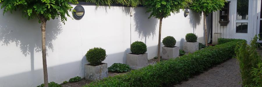 i trädgården - stenläggning, växter, singel www.itradgarden.se