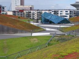 i trädgården - Empria köpcentrum, tak, sedum, fetbladsväxter www.itradgarden.se