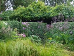 i trädgården - Lotties trädgård, besöksmål, perenner www.itradgarden.se