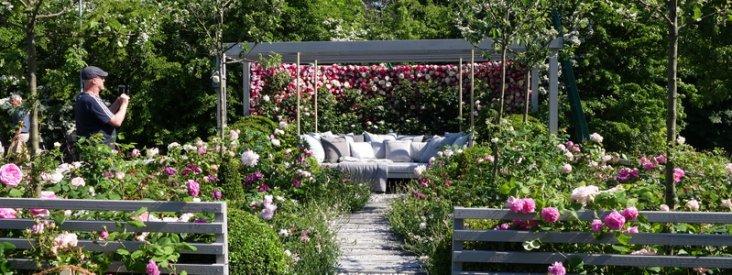 Malmö Garden Show 2016, visningsträdgård med rosor