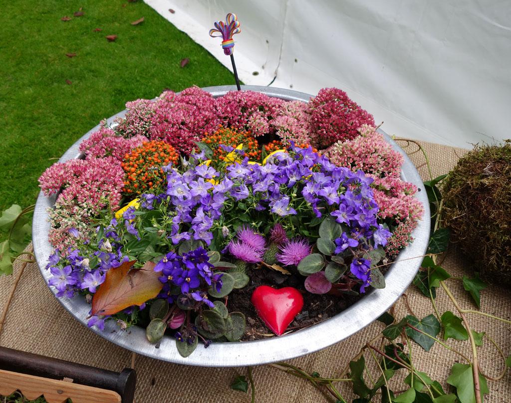 i Trädgården - liten plantering i metallkärl, blommor, rabatt