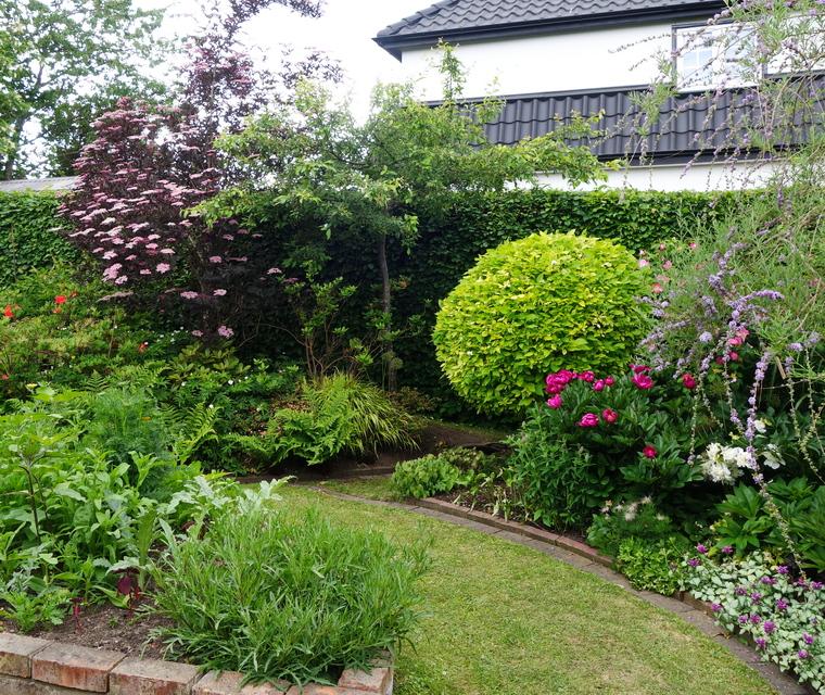 buskar för trädgård